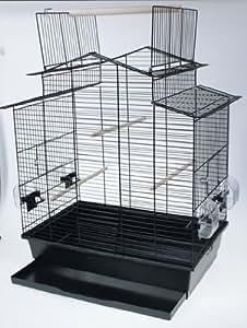 cage oiseaux perruches oiseaux exotiques canaris iza. Black Bedroom Furniture Sets. Home Design Ideas