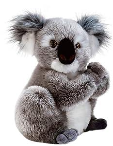 Plush&Company Nounours 05932 Koline - Koala de Peluche (22 cm)