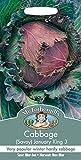 Portal Cool Sr. Fothergills - Vegetales - Col de Saboya enero Rey 3-500 semillas