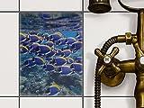 Fliesendekoration Dekorationssticker | Fliesen-Folie Sticker Aufkleber selbstklebend Badezimmer renovieren Küche Wall Art | 15x20 cm Design Motiv Fish swarm - 1 Stück