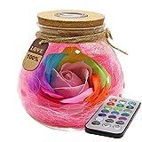 Nuohuilekeji Bloom - Lampada LED a Forma di Fiore di Rosa, in Vetro, con Telecomando Rosa