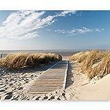 murando - Fototapete Strand 400x309 cm - Vlies Tapete - Moderne Wanddeko - Design Tapete - Wandtapete - Wand Dekoration - Sand Wasser Natur Himmel Düne Sommer Wolken Blau Nordsee 100403-39