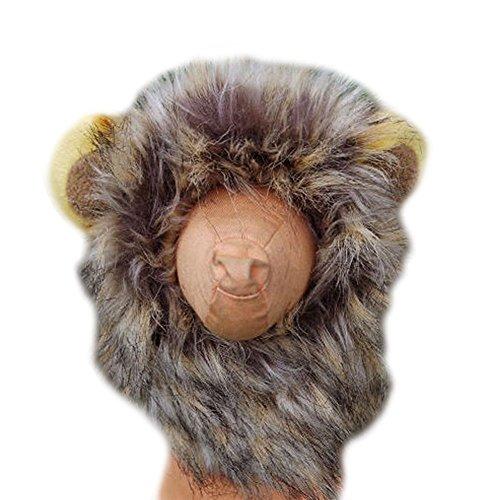 Rokoo Herbst Winter Haustier Lustige Nette Kostüm Löwe Mähne Perücke Für Hund Katze Halloween Weihnachten Dress Up Mit Ohren Mütze (Halloween-kostüme Mit Einem Haustier)