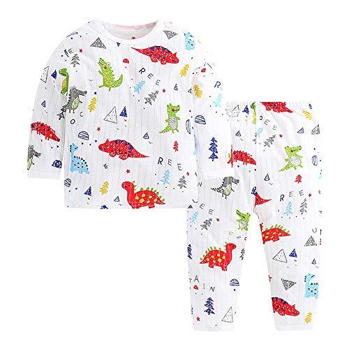 Baby Jungen Mädchen Langarm Hemd Und Hose Set Dinosaurier Druck Oansatz Herbst Pyjama Set Nachtwäsche(90) Adorable Set Hose Shirt