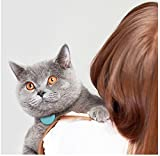 Loc8tor Pet Ortungsgerät für Katzen + 1 Katzenhalsband