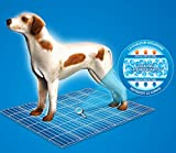 Kühlmatte für Hunde Gr. S 40 cm x 30 cm – Red Western - 5
