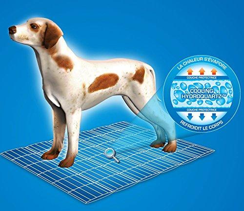 Aqua Coolkeeper Hunde Kühlmatte – Modell: Red Western (Gr. L 80x 60cm) - 5