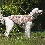 Corky 's Halsbänder see-me Dog Weste, klein, Corky 's Camo