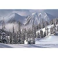 Comparador de precios Tomax Snowy Winter 1000 Piece Glow-in-the-dark Jigsaw Puzzle by Tomax - precios baratos
