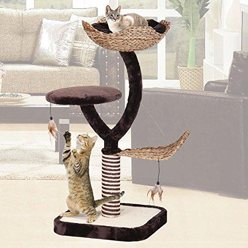Penn-Plax Multi Level Cat Play Baum, Lounge und Kratzbaum (Zwei-level-cat Baum)