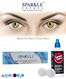 New Sparkle One-day Hazel Color Contact ...