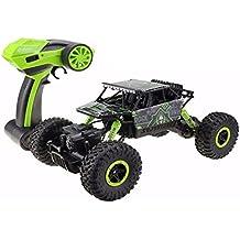 ToxTech Rock Crawler Off Road veicolo radiocomandato, 2,4 GHz Telecomando 4 x 4 guida veloce auto da corsa ad alta velocità Dune Buggy Erba, sabbia e terra