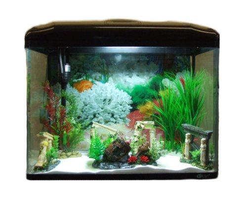 Aquarline Seastar HX 580 Aquarium Kit Complete with Lighting and Filter System, 70 Litre, Black