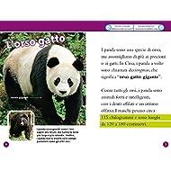 Panda-Livello-3-Ediz-a-colori