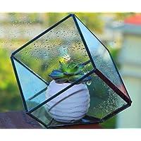 Ultra 15x15x15cm Premium cubo di terrario di vetro di qualità con un bordo di taglio perfetto per Moss e piante o decorazioni (15 x 15 x 15)