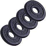 ScSPORTS 2 kg Hantelscheiben-Set Gusseisen 4 x 0,5 kg Gewichte 30/31 mm Bohrung