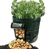Wawer Pflanzbeutel, Kartoffel Pflanzen PE Tasche Anbau Topf Gemüseanbau Hausgarten Liefert 34x50cm