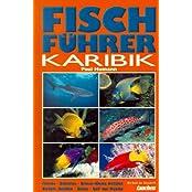Fischführer Karibik