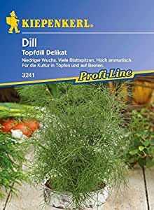 Kräutersamen - Dill Delikat (Topfdill) von Kiepenkerl