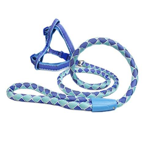 Jlxl Hundeleine  Kette  Riemen  Haustier Leine Gurt  klein Hund Teddy  Bär (Farbe : Blue, größe : S)