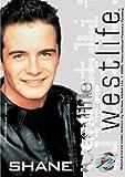 Westlife: Shane Cd-Rom Card
