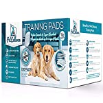 PetCellence Puppy Training Pads Premium 6 Layer Super Absorbent Dog Pad | Eliminate Odours Protect Carpet & Laminated Floor | Anti Slip & Leak Proof | Large Size 60 cm x 60 cm