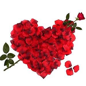 3000 Piezas Pétalos de Rosa, Hermosos Rojo Flores de Rose para el banquete de boda y la atmósfera romántica – Perfecta…