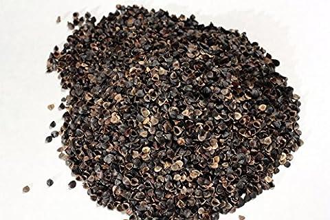 Organic Buckwheat Husk Pillow - Standard Size 19