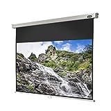 celexon Rollo-Leinwand Professional  Format 16:9  Nutzfläche 180 x 102 cm  Beamer-Leinwand geeignet für jeglichen Projektortyp, Full-HD und 3D-Leinwand  einfache Installation, gute Planlage