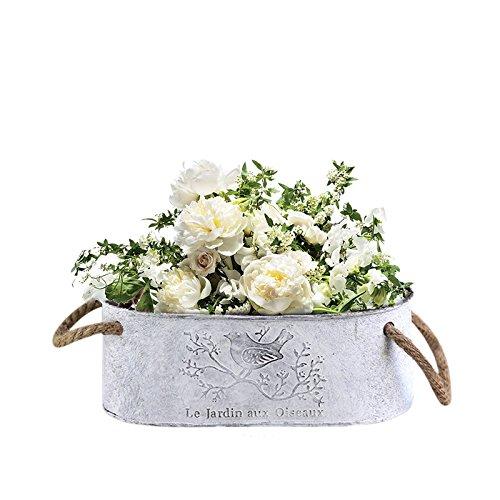 Oshide Vintage Metall Eisen Blumentopf Blumentopf mit Hanf Seil Griffe Shabby Vase Topf Sukkulenten Eimer Pflanzer Decor Blumentopf (Blume nicht im Lieferumfang enthalten)