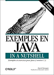 Exemples en Java in a Nutshell, 2e édition