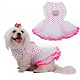 WIDEN ELECTRIC Multicolored Cake Party Skirts for Dog Cat Puppy Dress Pet Skirt Wedding Dresses Princess Summer Clothing