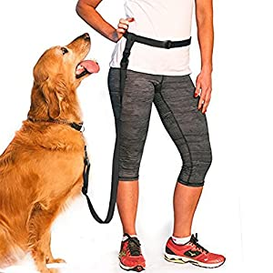 Dog Leash For Running Jogging Dog Walking Training Lead Rope Hands-Free (No Collar) 11