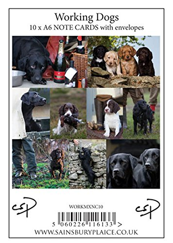 10-working-dog-notecards-with-envelopes-by-charles-sainsbury-plaice