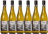 Bio mit Gesicht Riesling Mosel Qualitätswein Feinherb (6 x 0.75 l)
