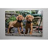 Cartel de chapa Placa metal tin sign Raza Los cachorros perros pequeños 20X30 cm