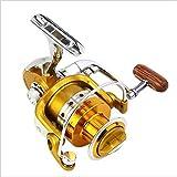 AUMING Spinning Mulinello Mulinello a Doppia Carica Carp Fishing Reel Bobina per Pesca con Mulinello Anteriore e Posteriore in Metallo (Size : BE3000)