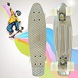 Unbekannt Meteor Premium Retro Cruiser Penny Board Deck Multicolor Skateboard Skate Skater Kunst Komplett Sport City Style,Silver