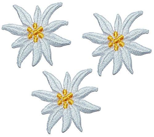 3 TLG. Set: kleine Blüten Edelweiss - 3,5 cm * 3 cm Bügelbild - Aufnäher Applikation - weiße / beige / Ivory Edelweiß - Alpenblume - Blumen Blüten für Trachte.. -