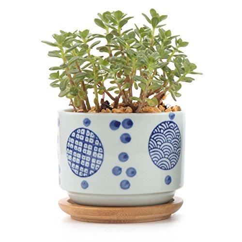 t4u-stile-giapponese-seriale-no2-ceramica-vaso-di-fiori-pianta-succulente-cactus-vaso-di-fiori-conte