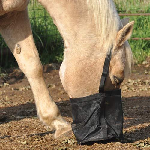 Cashel alimentación Rite bolsa–todos los tamaños proyecto, caballo, Mini/potro, o Pony, Negro
