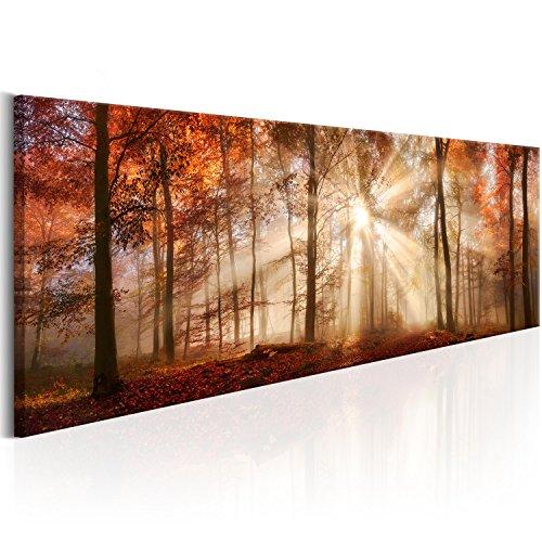 murando BILDER WALD 115x40 cm LEINWAND AUFGESPANNT AUF SPANNRAHMEN - Vlies Leinwand Wandbild XXL - Wand Bild Kunstdrucke - Waldlandschaft Natur Wald Panorama Baum c-B-0191-b-a 115x40 cm