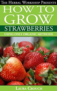 How to grow strawberries using only organic methods: Growing strawberries in containers or your garden by [Crouch, Laura]