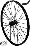 REDONDO 26 Zoll Hinterrad Laufrad WTB Felge Shimano Deore XT FH-M756 Nabe Disc Vergleich