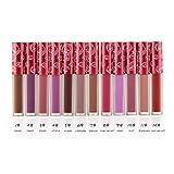 TOPBeauty Lot de 12 Couleurs Maquillage Waterproof à Lèvres Mat Liquide Beauté Brillant Rouge à Lèvres