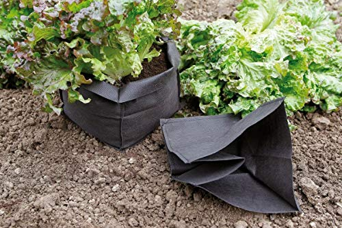 NORTENE Lot de 12 Sacs de Protection pour Salade Bag Biocontrol
