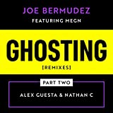 Ghosting (feat. Megn) (Alex Guesta Remix Radio Edit)