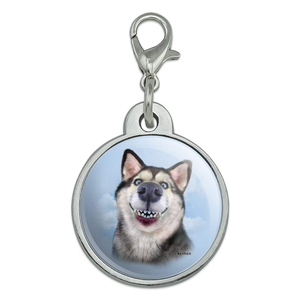 GRAPHICS & MORE Siberian Husky Dog Selfie Chrome Plated Metal Pet Dog Cat ID Tag – Small