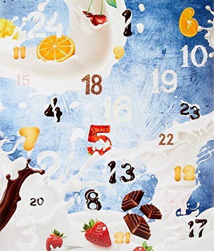 Protein Adventskalender I 24 verschiedene Proteinpulver I Geschenkidee für Fitnessbegeisterte I Eiweiß Protein Kalender für Sportler Erwachsene Muskelmänner -