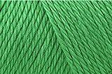 Caron einfach soft Acryl Aran Strickgarn Wolle Garn 170g -9779grün